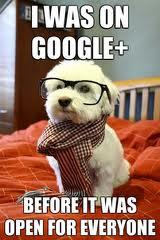 Yo ya estaba en Google+...
